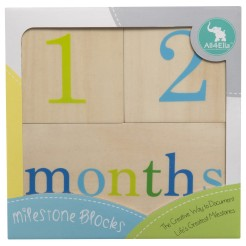Milestone blocks by all4ella